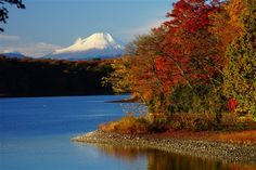 Lake  Tama in autumn. Higashiyamato, Tokyo 多摩湖