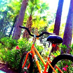 Biking is the perfect way to get around Hilton Head Island and take in nature along the way! #HiltonHead #SouthCarolina #travel