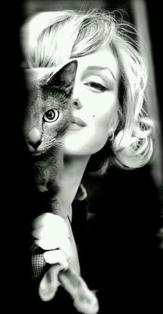 Marilyn Monroe with a Russian Blue. This picture makes me smile. That kitty is gorgeous and so is Marilyn! Crazy Cat Lady, Crazy Cats, Classic Hollywood, Old Hollywood, Hollywood Actresses, Portraits, Russian Blue, Foto Art, Cat People