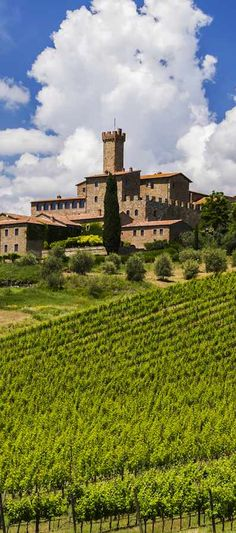 WINE TASTING: Castello Banfi - You might want to set aside an entire weekend for Castello Banfi, a family-owned vineyard estate and winery in Brunello di Montalcino. Though it's famous for its award-winning Brunellos, syrahs, merlots, cabernets, and blends, you'll want to stay long after the wine tasting to soak in the spectacular surrounds