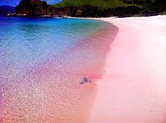 Pink Beach, Lombok Indonesia