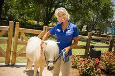 Meet Honey, a rescued miniature horse, at the SEA Garden.
