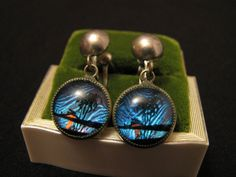 Vintage Silver Tone Real Blue Butterfly Wing Ocean Scene by ditbge, $14.25