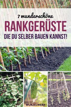 7 Ideen für Rankhilfen, die du selber bauen kannst. Ein DIY Rankgerüst aus Weide, Metall, Bambus oder anderem Holz hilft dir dabei, Gurken, Melonen, Tomaten, Erbsen, Bohnen, Himbeeren und Co. anzubauen und ist obendrein eine tolle Garten-Ideen für deine Gartengestaltung. Mit einer Ranhilfe kannst du einen kleinen Garten strukturieren und gestalten und Ranhilfen sind auch toll als Sichtschutz! #Garten #Wurzelwerk #Gartengestaltung