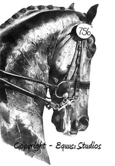 Dressage Drawing Horse Art Limited Edition Equine by equus2studios, $44.00