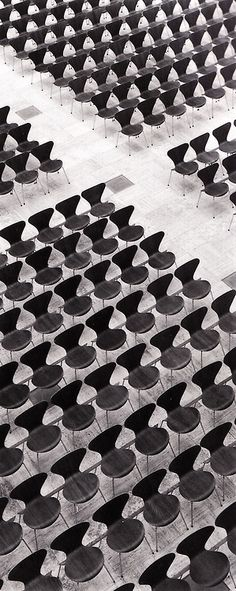 Seven CHair x ARNE JACOBSEN