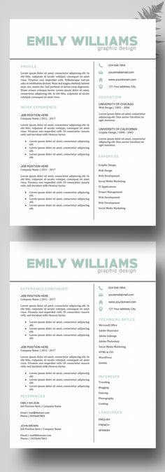 Professional Resume Template  Cv Template Word  Pages  Cover