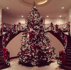 Merry Christmas!  How's your Christmas tree looking this year? Probably not nearly as glam as these celebrities' trees.   Don't feel too bad. You probably didn't enlist the help of a profession...