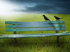 Photo about An old green broken wooden bench in a field of grass with two black birds or crows on the back slat. Image of danger, dark, copy - 7510622 Creative Photoshop, Outdoor Furniture, Outdoor Decor, Bench, Stock Photos, Image, Psychology, Grass, Posts