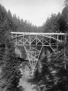 Schwandbachbrücke, Robert Maillart