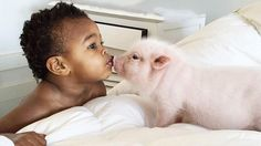 There's no bond like the one between a baby girl and her pig — at least that's what we've gathered from Libby and her 3-month-old pet Pearl.