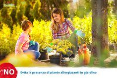 Evita la presenza di piante allergizzanti in giardino.