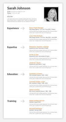 professional resumecv professional resume resume cv and stationery - Opera Resume Template