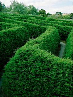 i think there is a maze at the palace and when they escape they have to find their way thorough a maze...!