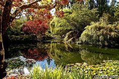 Beautiful gardens around the world