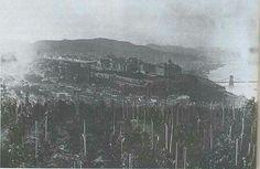 1890. Gellérthegyi szöllők