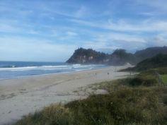December 2013 - Salt spray and sunshine Summer Catch, Seaside Village, December 2013, Auckland, New Zealand, Sunshine, Salt, Waves, Island