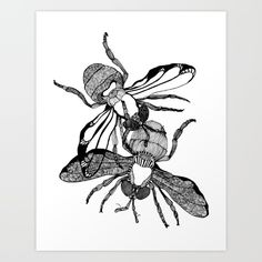 Houseflies art print by Kriszti Balla on @society6  #houseflies #housefly #illustration #krisztiballa #flies #animal #insect #animalillustration