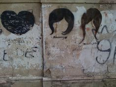 Buenos Aries 2008