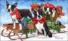 "Boston Terrier Christmas cards are 8 1/2"" x 5 1/2"" and come in packages of 12 cards. One design per package. All designs include envelopes, your personal message, and choice of greeting.Select your greeting from the drop-down menu above.Add your personal message to the Comments box during checkout."