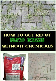 Weeds will germinate in regular sand. We use polymeric sand in our patios. My husband and I own a patio business. Sweep it in dry on dry patio. Remove all excess from pavers then mist lightly. Stay off patio for 24 hours. This sand will bond together like concrete and will not blow away or wash out.