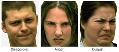 The face of rejection: Rejection sensitivity moderates dorsal anterior cingulate activity to disapproving facial expressions