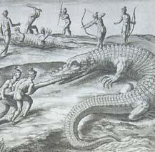 Exaggerated depiction of alligators Alligators, America, Awakening, Books, Painting, Key, Dibujo, Crocodiles, Libros