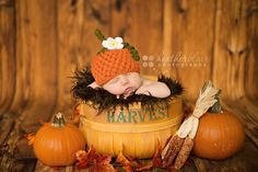Newborn Baby Girl Pumpkin Hat, newborn baby pumpkin hat, Halloween Photography Prop Photo Prop, Infant Boy Girl