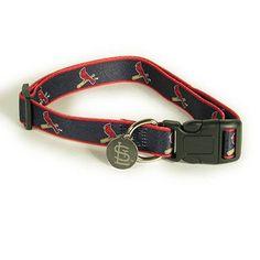 Sporty K9 St. Louis Cardinals Dog Collar II, Medium/Large - http://www.thepuppy.org/sporty-k9-st-louis-cardinals-dog-collar-ii-mediumlarge/