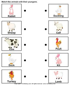 Match farm animals to their babies - TurtleDiary.com