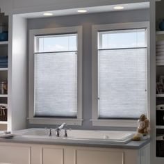 Privacy Window Blinds And Shades Bathroom Windows For Living