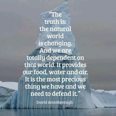 """""""The truth is our natural world is changing. And we are totally dependent on that world. It provides our food, water and air. It is the most precious thing we have, and we have to defend it."""" - David Attenborough"""