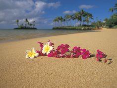 Polynesian Paradise, Oahu, Hawaii