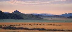 Landscape - Destination - Wolwedans NamibRand Reserve - Namibia