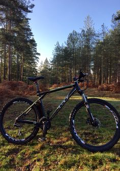 New Forest Mountain Biking Pinterest Forests And New Forest
