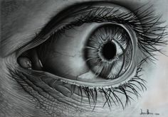 Hyper realistic drawing of glistening eye