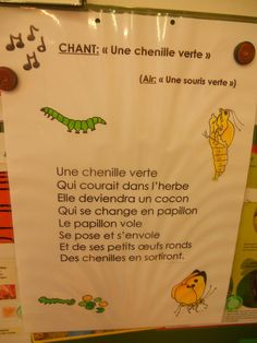 Chanson chenille French Teaching Resources, Teaching French, Preschool Games, Kindergarten Literacy, French Poems, Butterfly Life Cycle, French Classroom, French Immersion, Poems
