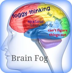 Brain fog is a classic part of chronic fatigue syndrome and fibromyalgia, presenting as: Horrible short-term memory, Difficulty with word finding and word substitution (e., substituting th… Healthy Brain, Brain Health, Gut Health, Health Tips, Mental Health, Healthy Mind, Healthy Habits, Health Benefits, Lyme Disease