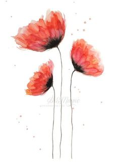 Learning How to Paint Watercolor Poppies, My Way – Part 4 - eman Said Watercolor Poppies, Watercolor Cards, Watercolour Painting, Painting & Drawing, Tattoo Watercolor, How To Watercolor, Watercolors, Watercolor Flowers Tutorial, Illustration Blume