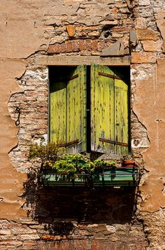 Venice Italy ~ weathered yellow shutters against wonderful crumbly wall. Old Windows, Windows And Doors, Window View, Photo Window, Through The Window, Old Doors, Doorway, Stairways, Belle Photo