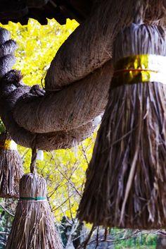 Shimenawa, sacred rice-straw ropes in Japan