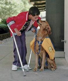 Precious service dog photo. I cannot wait to better the lives of people with a dog.