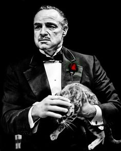 The Godfather - Marlon Brando as Don Vito Corleone holding the cat he found on the film lot The Godfather Poster, The Godfather Wallpaper, Godfather Movie, Marlon Brando, Mafia, Der Pate Poster, Clown Tattoo, Skull Art, Classic Hollywood