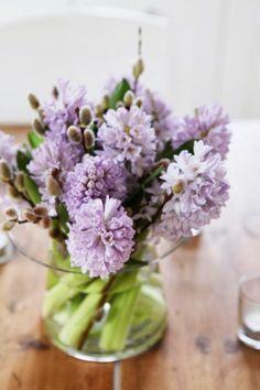 Hyacinths ჱ ܓ ჱ ᴀ ρᴇᴀcᴇғυʟ ρᴀʀᴀᴅısᴇ ჱ ܓ ჱ ✿⊱╮ ♡ ❊ ** Buona giornata ** ❊ ~ ❤✿❤ ♫ ♥ X ღɱɧღ ❤ ~ Th 29th Jan 2015