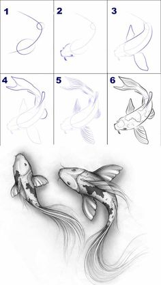 Ideas for home - Tiere zeichnen - Zeichnungen Easy Pencil Drawings, Fish Drawings, Art Drawings Sketches, Sketch Art, Koi Fish Drawing, Tattoo Sketches, Hand Drawings, Drawings Of Hands, Pencil Drawings For Beginners
