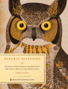 Natural Histories: 500 Years of Rare Science Illustrations   Brain Pickings