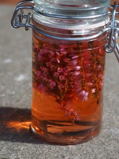 Røsslyngeddik - Kirsten Winge Chutney, Food Storage, Allrecipes, Pesto, Mason Jars, Spices, Food And Drink, Canning, Health