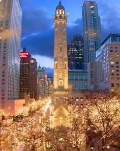 Downtown Chicago Christmas Season <3 been there before...beautiful city...would love to go during Christmas!