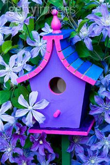 Purple Bird House...vibrant color for the garden