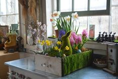 Repurposed drawer upcycled as a planter for spring with bulbs, eggs, moss and bunny! | homeiswheretheboatis.net #pottingshed #Easter Planting Bulbs In Spring, Spring Bulbs, Egg Shell Planters, Garden Planters, Homemade Easter Baskets, Plastic Sheds, Easter Table Decorations, Easter Decor, Unique Centerpieces